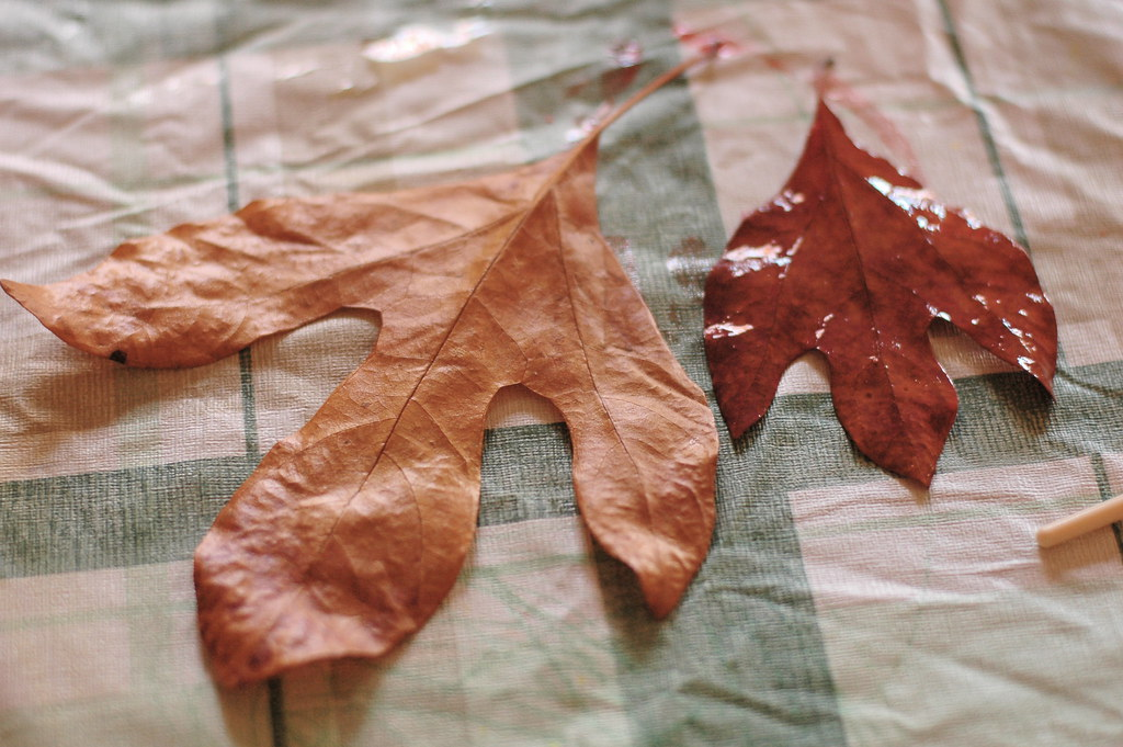 Sticks & Leaves: Painted Glycerin Experiments