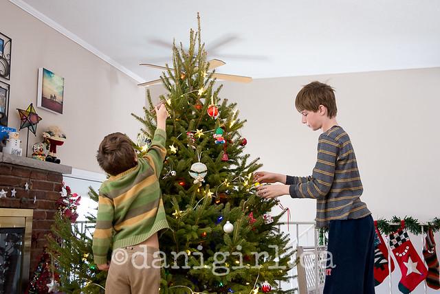 O Christmas Tree - 2013