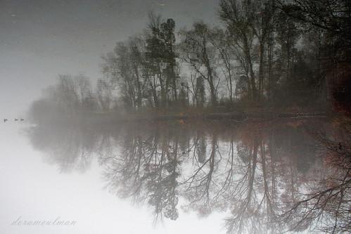 mist landscape us nc northcarolina gastonia robinwoodlake dorameulman mistytrio