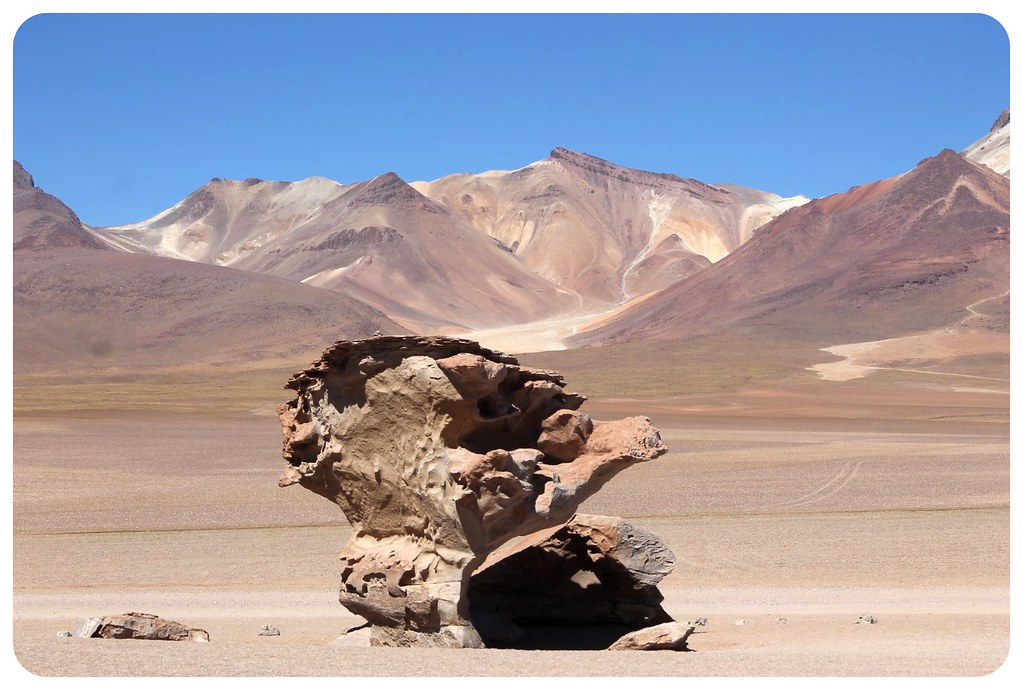 11 arbol de piedra and mountain bolivia