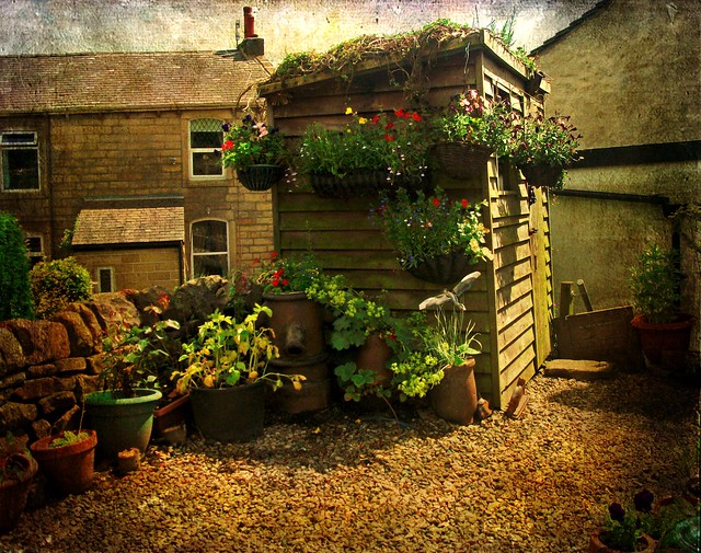A well decorated shed, Fujifilm FinePix AV110