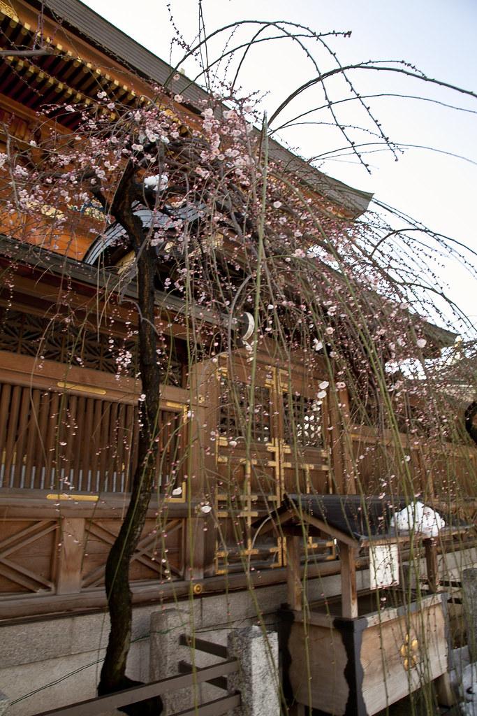 湯島天滿宮11