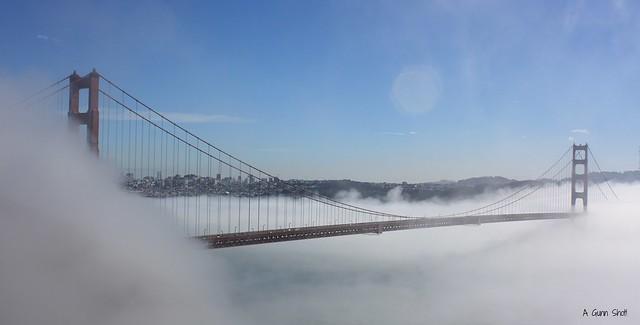 Mist-ical bridge