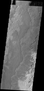 Lava flows near Adams Crater (THEMIS_IOTD_20140422)
