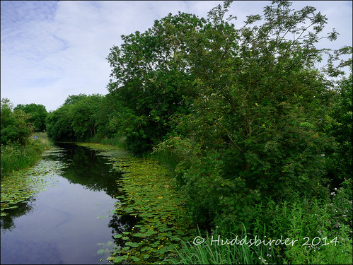 Leven Canal