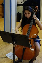 bowed string instrument, classical music, string instrument, violin, double bass, cello, string instrument,