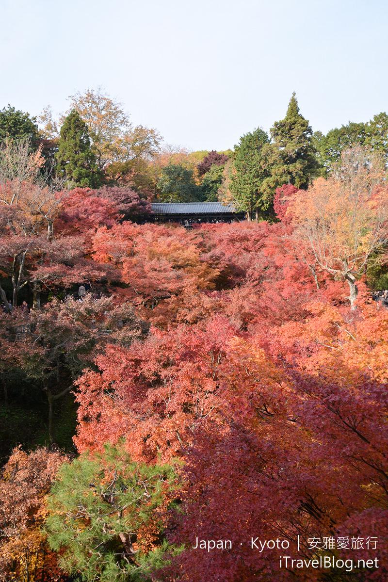京都 东福寺21