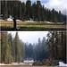 Shot of Log Meadow by daveynin