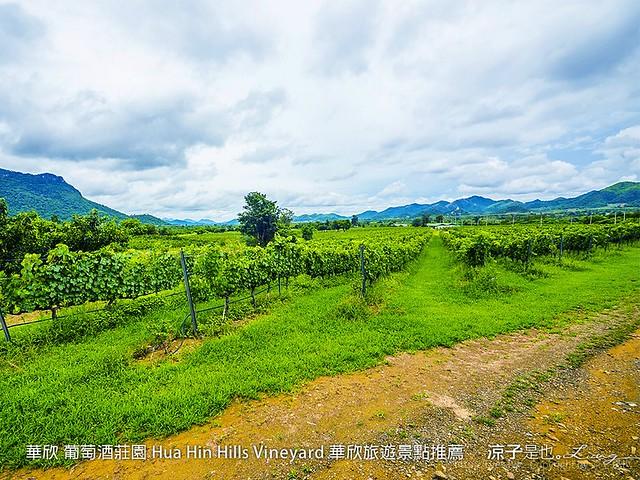 華欣 葡萄酒莊園 Hua Hin Hills Vineyard 華欣旅遊景點推薦 68