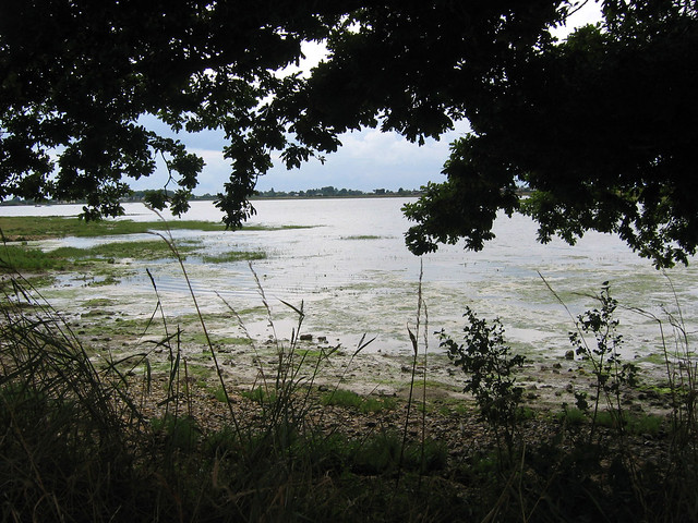 Chichester harbour north of Bosham
