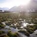 The trans-Himalayan valley of Zanskar. by Leonid Plotkin