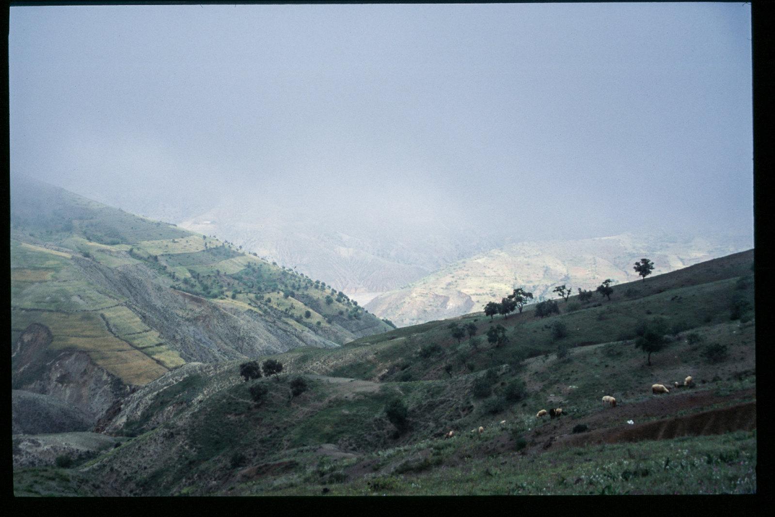 Maroc -Rif - Vallée perdue dans les montagnes