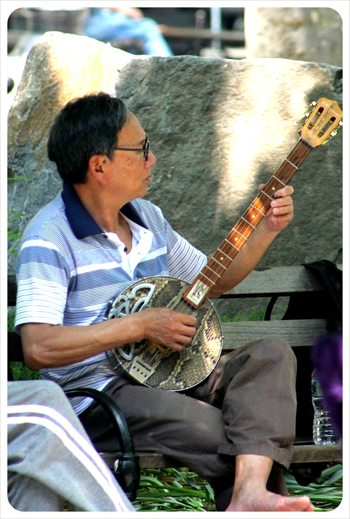 chinese fiddle player