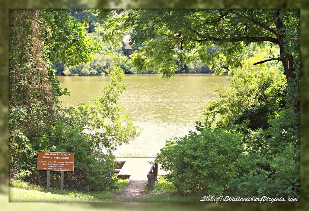 Woodstock Pond, York River State Park