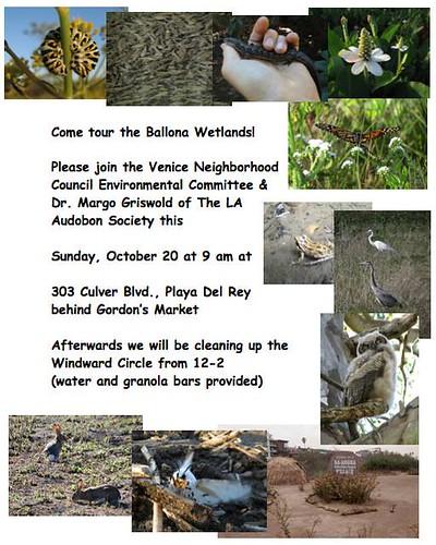 VNC: Free Ballona Wetlands Tour This Sunday!
