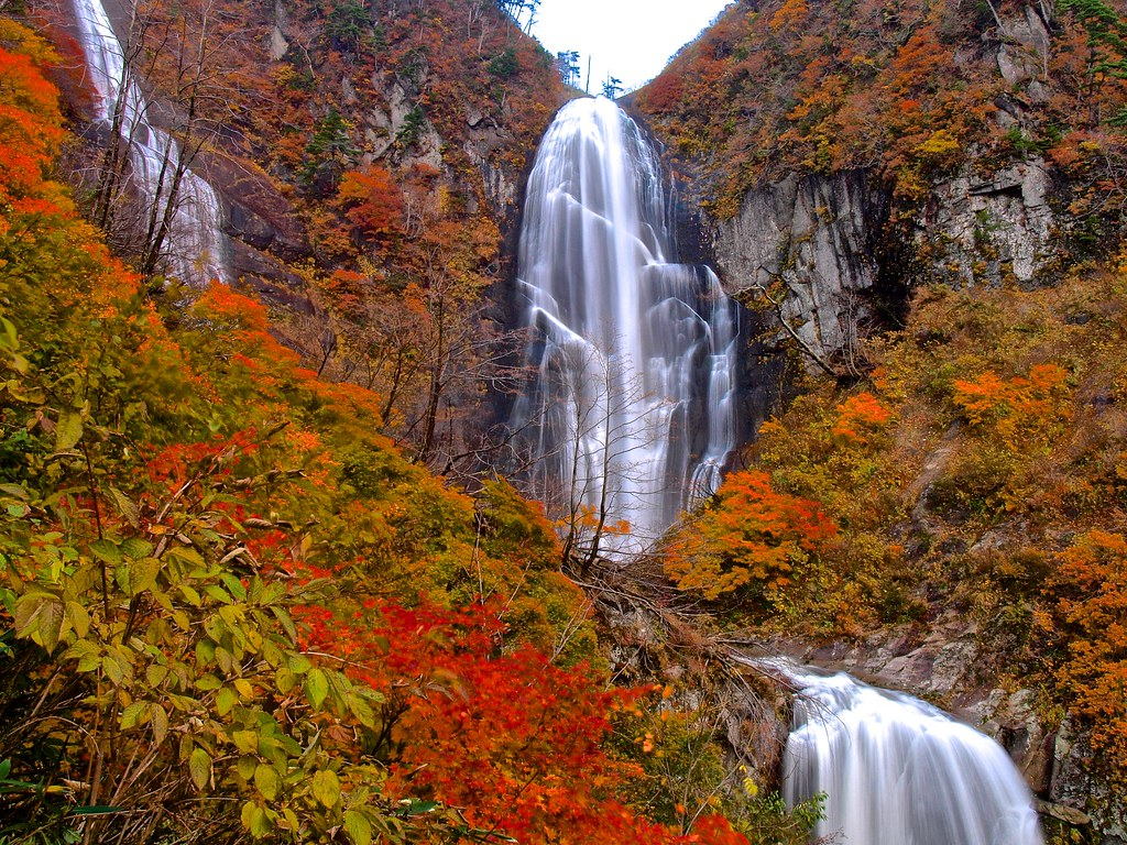 autumn in Japan falls