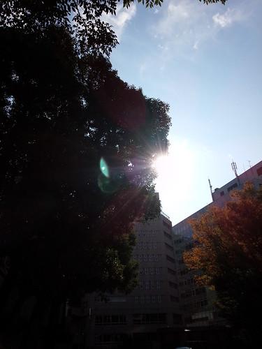 DSC_1365.jpg