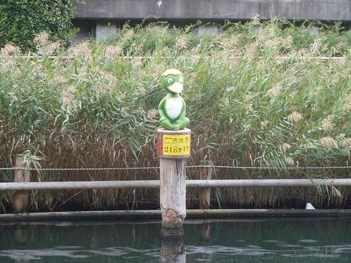 横十間川親水公園に現れたカッパ