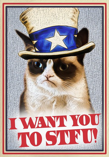 GRUMPY KAT WANTS YOU by WilliamBanzai7/Colonel Flick