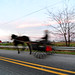 Small photo of Amish Speed