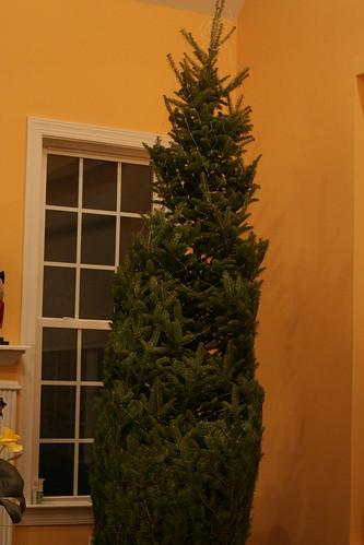 Christmas Tree 2013 (20)