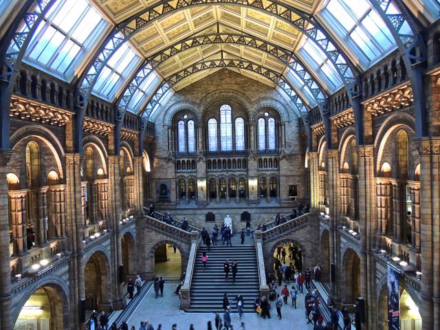 Natural History Museum, London - Explored