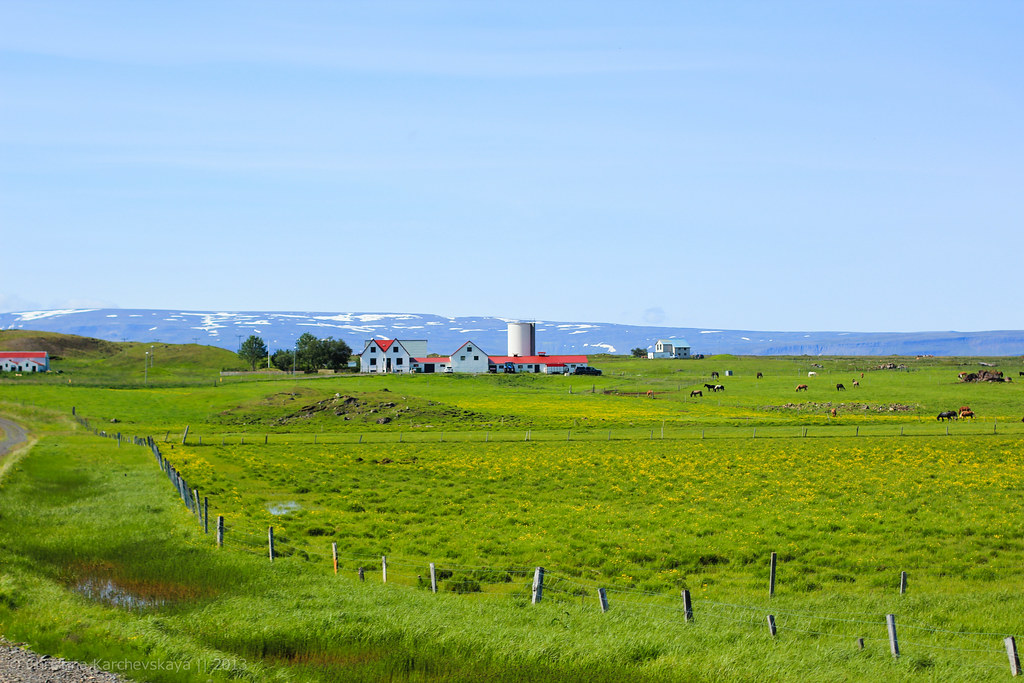 Iceland, Day 6 [20]