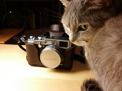 Fujifilm X100S (and Bubs, stealing the focus)