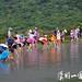 2013陽明山國家公園暑期兒童生態體驗營13