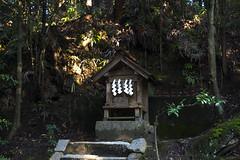 aekuni_shrine-20