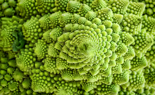 Romanesca Broccoli