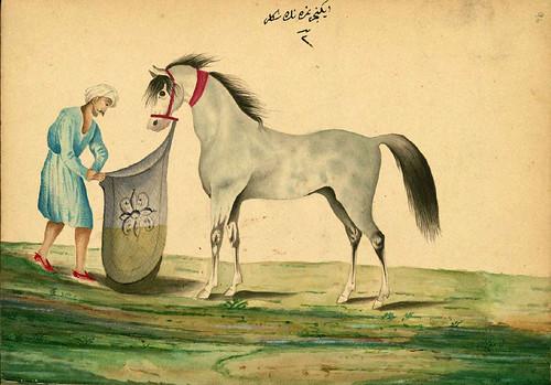 002  Alimentando a un caballo - Walters manuscrito W.661- fol 96a-The Art Walters Museum