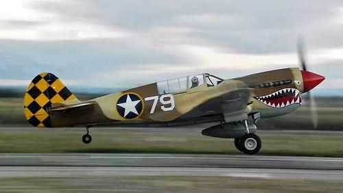 Sharks are biting: P-40N Warhawk takeoff
