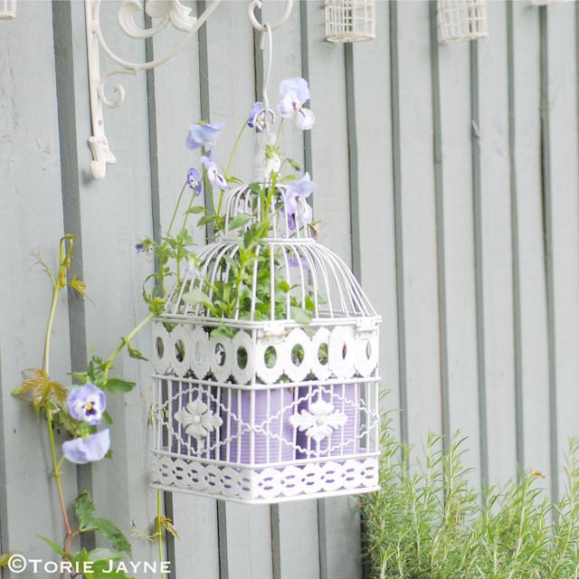 Hanging birdcage