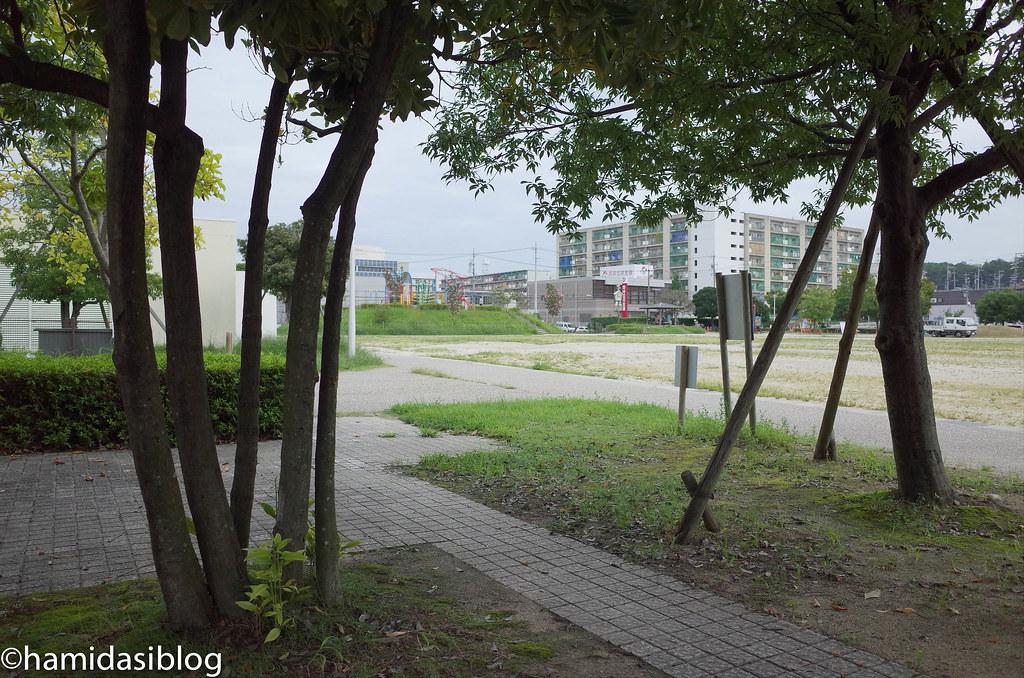公園 ベンチからの風景.jpg