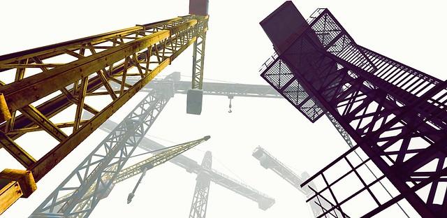 Crane obsession