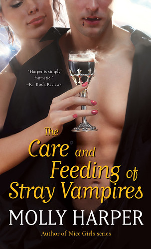 Book 1: THE CARE AND FEEDING OF STRAY VAMPIRES paperback