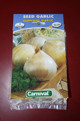 2013-08-13 - Elephant Garlic - 01 - Packet front