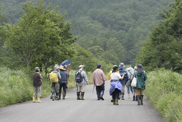 道路をはさんで左右の湿原も,それぞれに特性の違った場所であることがわかった.