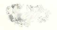 """British Library digitised image from page 293 of """"Midsummer Eve: a fairy tale of love"""""""