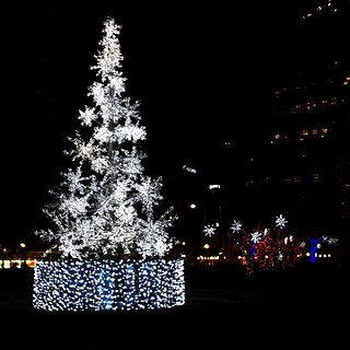 Shiny LED trees in a Toronto park. Still no snow.