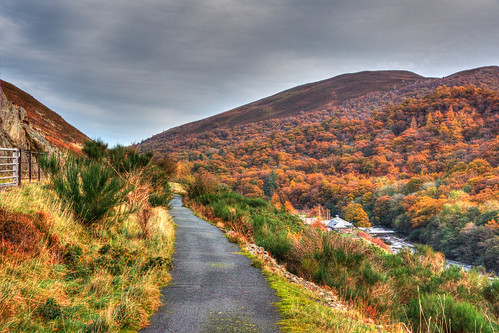 autumn red orange fall wales oak autumncolours elan footpath dams midwales rhayader elanvalley reservoirs mabjack