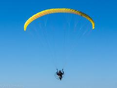 paragliding, parachute, air sports, sports, parachuting, windsports, powered paragliding, extreme sport,