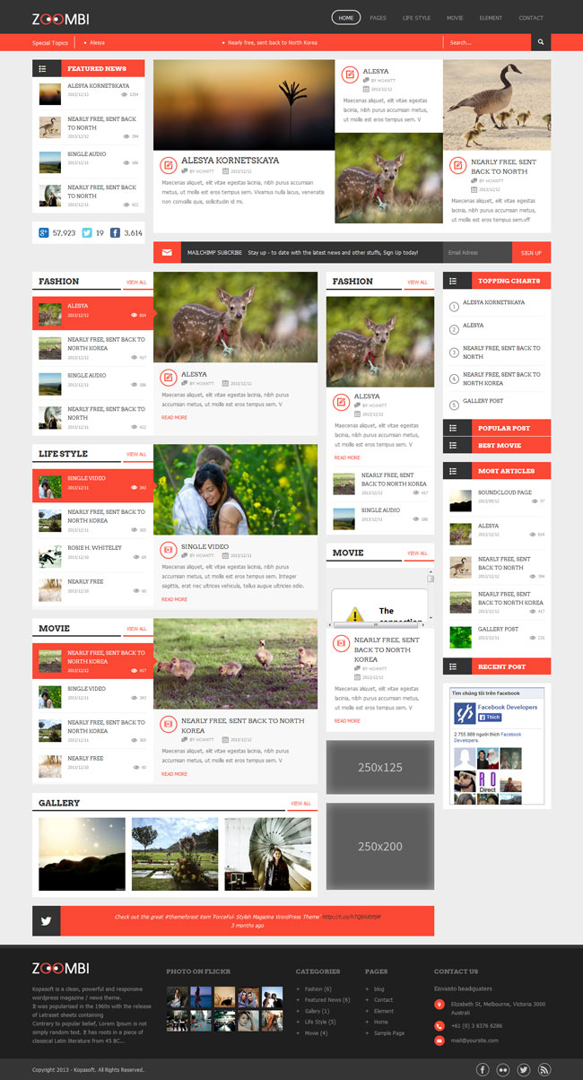 Zoombi- Magazine WordPress theme