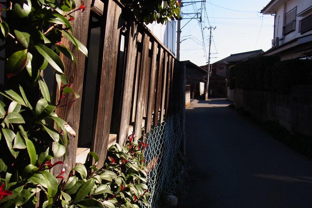 RIMG0692 - 2014-01-02 07-19-17-akigawa