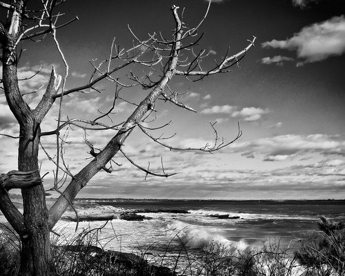 B&W Sachuest Point-3 by enjoiskate8