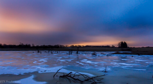 wood longexposure morning trees winter sky tree nature water leaves clouds canon landscape outdoors morninglight cloudy overcast 7d orangesky february cloudysky stormclouds buschwildlife canon7d canon1585mmlens
