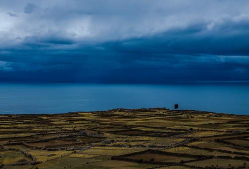 lake storm tree peru titicaca nature island amantani d5100