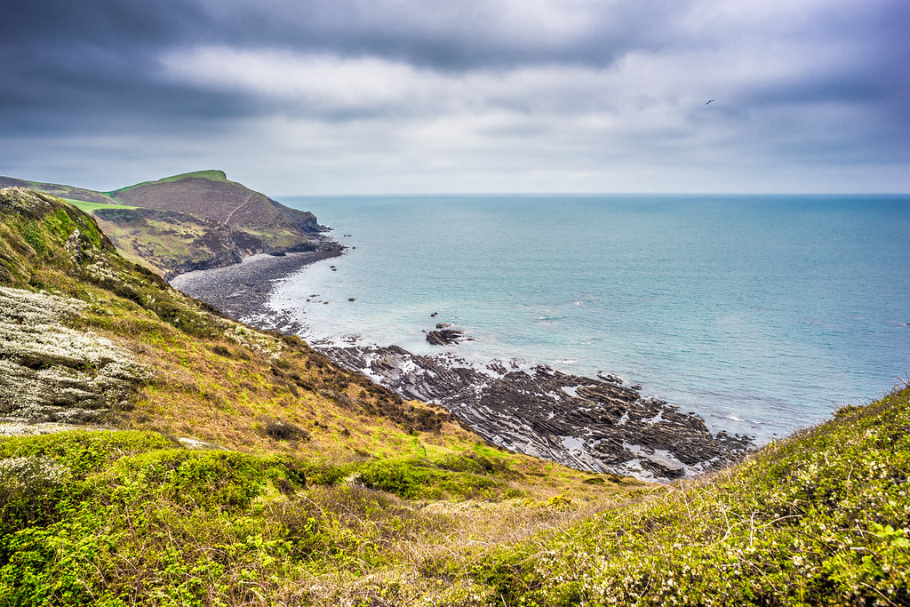 High cliffs, Crackington Haven, Cornwall, United Kingdom picture