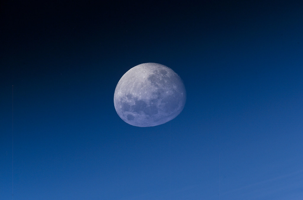 ed lu asteroid - photo #31
